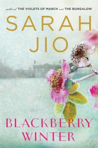 Cover of Blackberry Winter