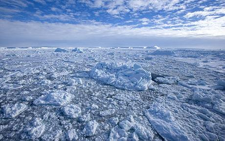 Pack ice and icebergs, Antarctic Peninsula, Weddell Sea, Antarctica, Polar Regions